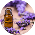 10ml Lavender Essential Oil